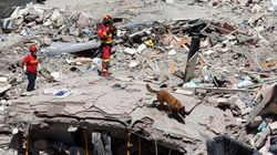 Identificadas cuatro de las siete víctimas mortales del derrumbe de