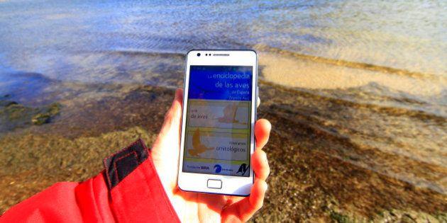 SEO/BirdLife: La aplicación móvil que te permite reconocer aves sobre el
