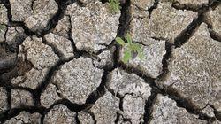 La sequía irá a