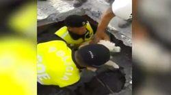 El emotivo rescate de un perro entre los escombros tras el terremoto en