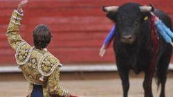 El Constitucional anula la prohibición de los toros en