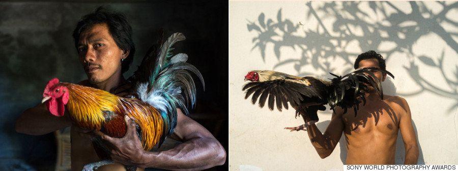 Todas las imágenes ganadoras de los Sony World Photography Awards