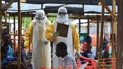 La OMS anuncia el final de la epidemia del ébola en