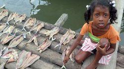 Energías renovables para los pescadores del Pacífico