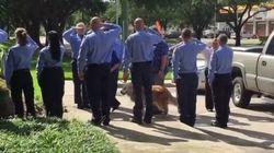 El emotivo adiós al último perro de rescate del 11-S que quedaba