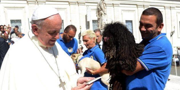 El papa sostiene que la Iglesia no puede seguir insistiendo en el aborto y la