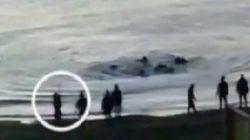Las grabaciones que conocemos hasta ahora de la tragedia de Ceuta
