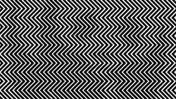 Una ilusión óptica que te hará abrir los ojos (y no sólo de