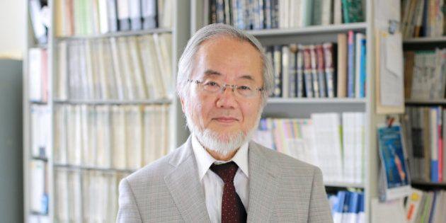 Yoshinori Ohsumi, premio Nobel de Medicina 2016 por sus descubrimientos sobre la
