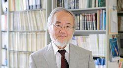 El Nobel de Medicina premia a los descubrimientos sobre la
