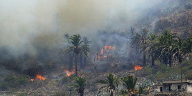Los incendios arrasan 130.830,20 hectáreas de superficie forestal en lo que va de