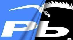 Anonymous convierte a la gaviota del PP de Pontevedra en un