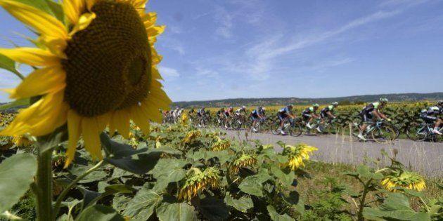 13 imágenes del Tour que te van a gustar aunque te aburra el ciclismo