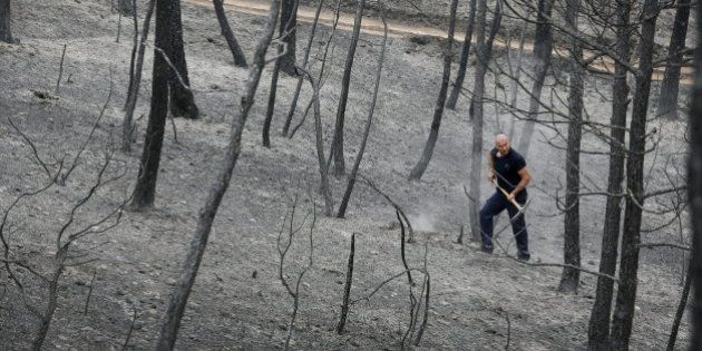El incendio forestal de Òdena ha sido controlado por los