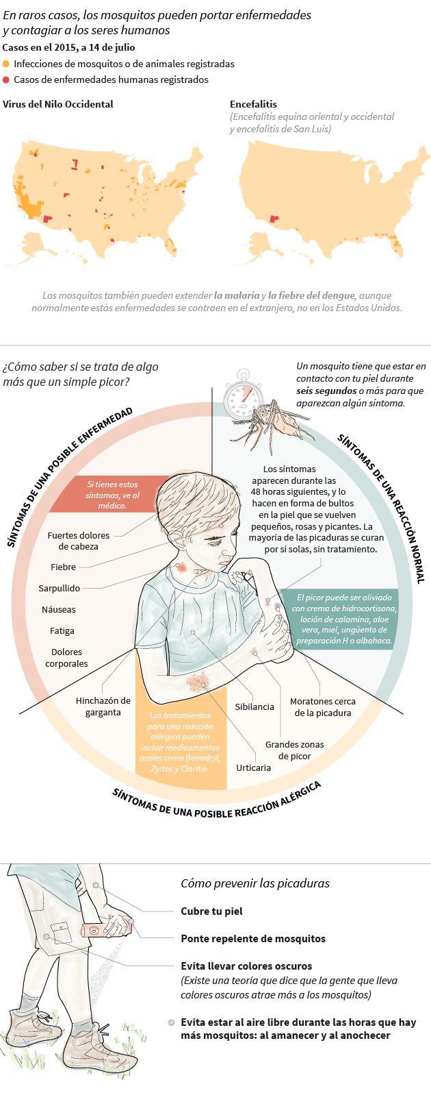 Esto es lo que le pasa a tu cuerpo cuando un mosquito te pica