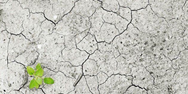 Día de la Tierra: Es el cambio climático,