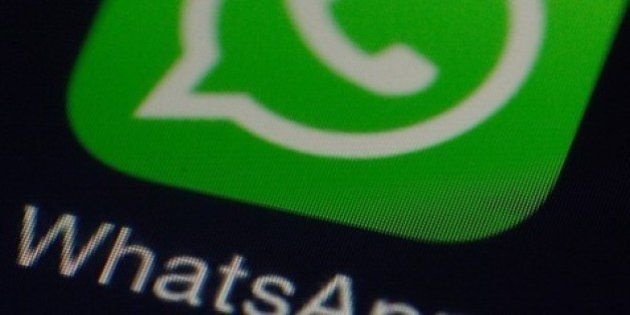 Alertan de un WhatsApp falso que busca familias de acogida para un