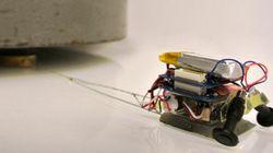 Así son los Microtugs, alucinantes los minirrobots