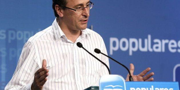 Alfonso Alonso, portavoz del PP: