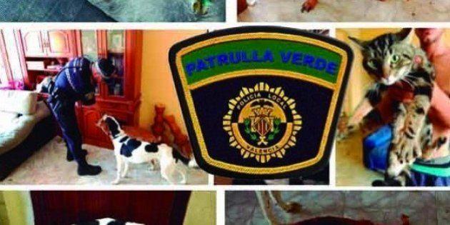 La Policía rescata a tres perros y un gato famélicos, que agonizaban en una casa sin comida ni