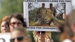 Zimbabue pide a EEUU la extradición del asesino de