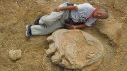 Descubren una huella de dinosaurio gigante en el desierto de