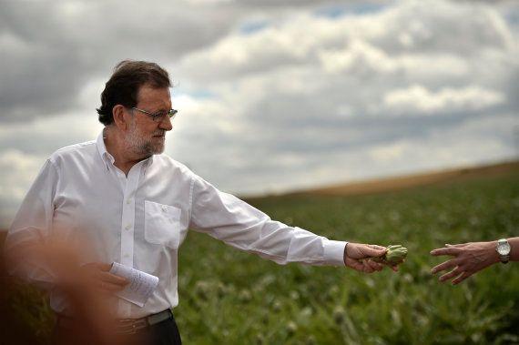 La foto de Rajoy andando entre alcachofas que triunfa en