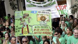 Marchas multitudinarias en Baleares contra la política educativa del