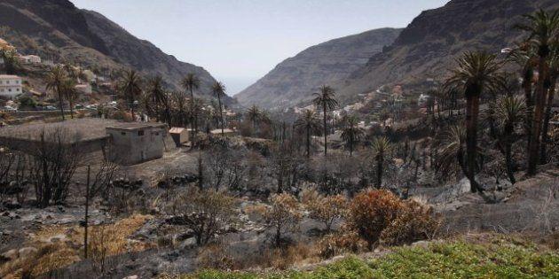 Incendios: Los hidroaviones tratan de apagar un nuevo fuego en Los Realejos y La Orotava