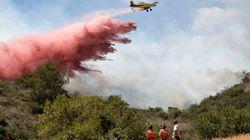 Más de 133 medios aéreos y terrestres intentan extinguir cuatro incendios en