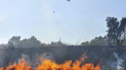 Las llamas en La Gomera mantienen lejos de su hogar a 2.000