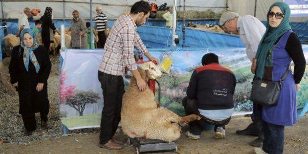 La petición de PACMA coincidiendo con la Fiesta del Sacrificio