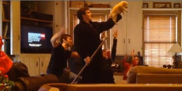 Presentando al perro al estilo 'Rey León'