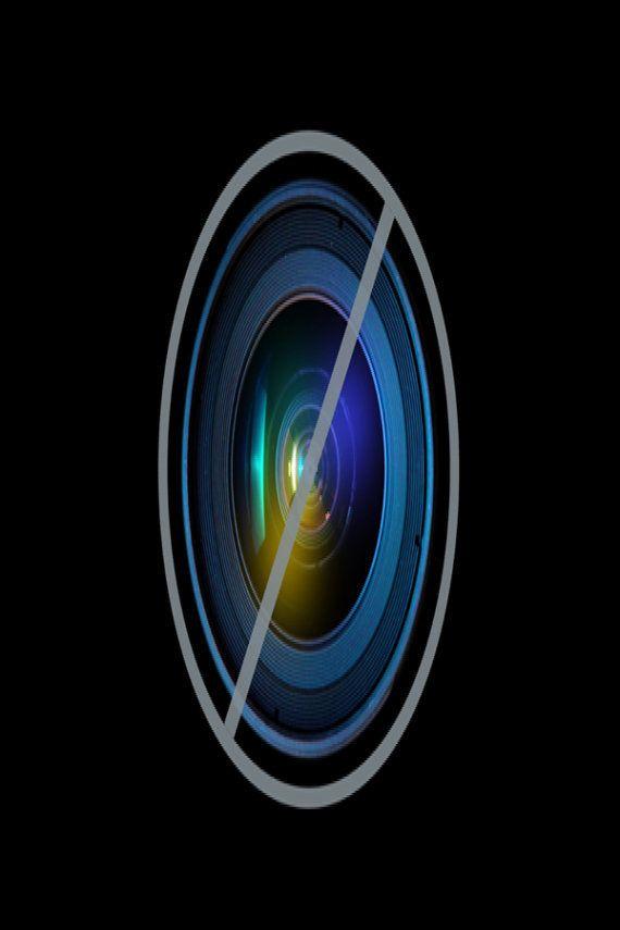 Bogavante de dos colores: un caso de cada 100 millones (FOTOS,