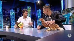 Muy loco todo: Joaquín intenta hipnotizar a una gallina en 'El