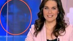 El telediario ilustra el Premio Nadal con una foto de... Rafa (VÍDEO,