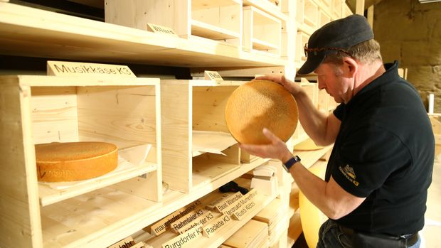 "Beat Wampfler, a cheese maker, checks his wheels of cheese in the K3 cellar during a media presentation of the experiment to ""insonify"" cheese with different types of music by the University of the Arts in Burgdorf, Switzerland, March 13, 2019. Picture taken March 13, 2019. REUTERS/Denis Balibouse"