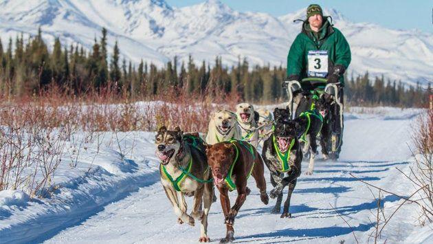 Fairbanks (Alaska) en trineo tirado por