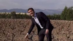 Cachondeo y bromas con este vídeo de Pablo Casado en unos viñedos de La