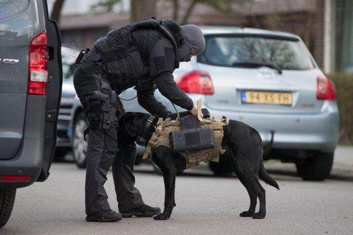 Dutch counter terrorism police install a camera on a sniffer dog as they prepare to enter a house after a shooting incident i