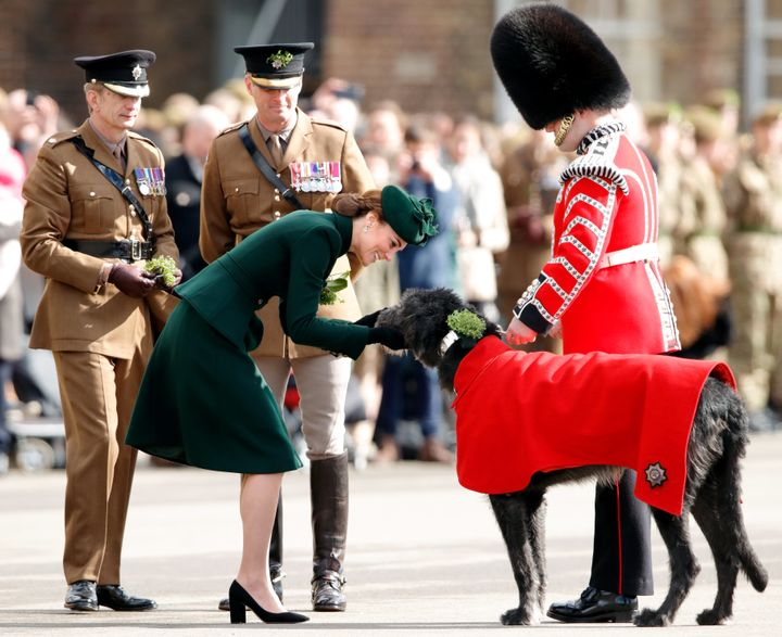 The Duchess of Cambridge presents Irish Wolfhound Domhnall, regimental mascot of the Irish Guards, with a sprig of shamrock d
