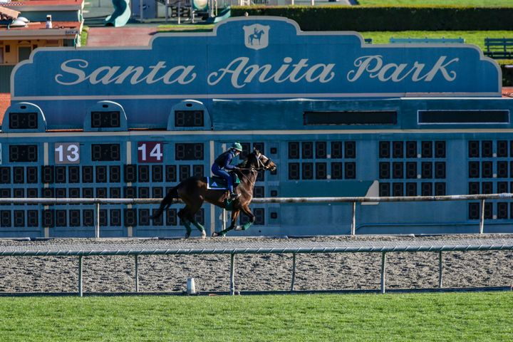 A rider is seen on a training track at Santa Anita Race Track in Arcadia on Friday, March 08.