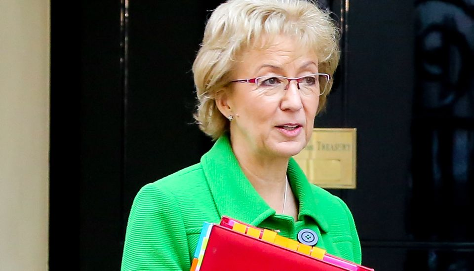 Commons leader Andrea