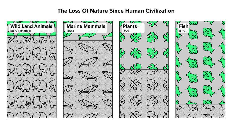 세계 동식물 개체수 감소는 기후 변화보다도 더 큰