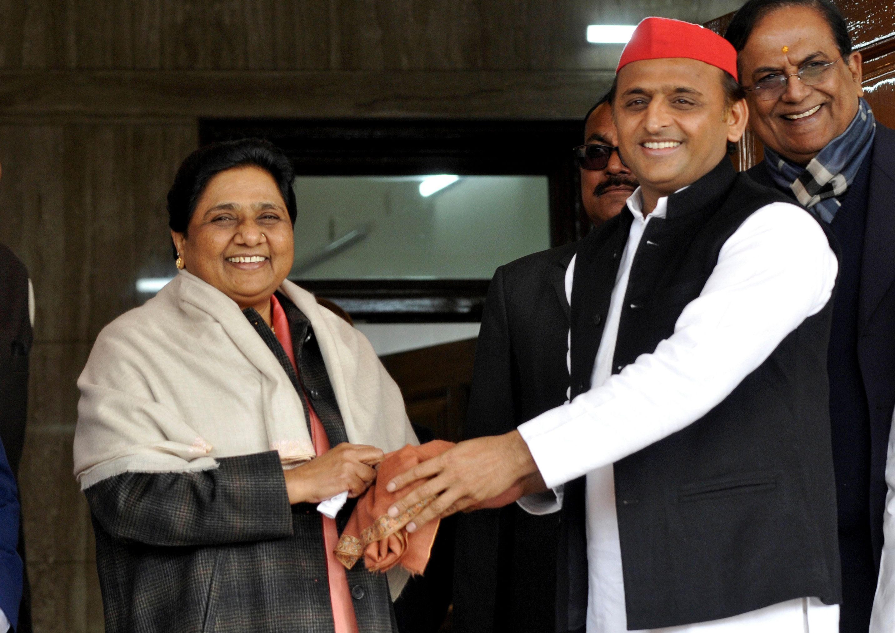 BSP Chief Mayawati Says She Will Not Contest Lok Sabha