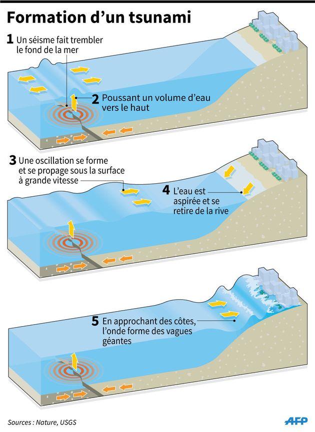 Tsunami aux Célèbes en Indonésie: comment se forment ces