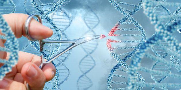 Pour la première fois, des scientifiques ont modifié l'ADN dans un homme vivant