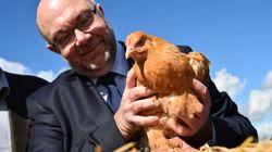 Stéphane Travert, le ministre de l'agriculture, fustige les