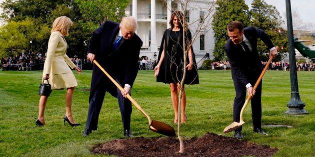La photo de Trump et Macron qui plantent un chêne vaut le