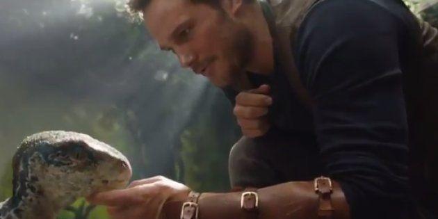 Chris Pratt caresse un bébé dinosaure dans les premières